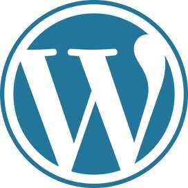 WordPress Developer required for freelancing