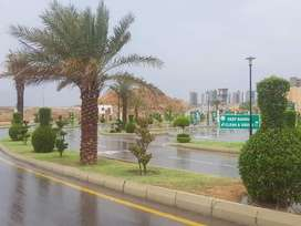 250 sq. yards residential plot available in front of Danzoo bahria tow