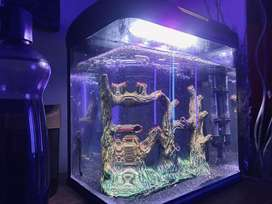 Aquarium set black