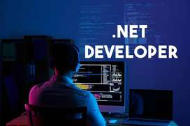 Looking for Dot Net developer 0 to 1 year experienced
