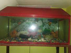 Fish Aquarium with Stand and all the Accessories like oxygen, filter.