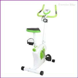 Exercise Cycle, Apple Magnetic Cycle & Bike,  Every day is a choice.