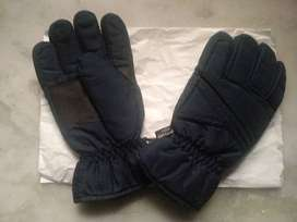 Brand New Imported Insulated Pair of Gloves