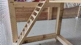 Sturdy & Cute Bird Cage
