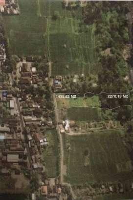 Tanah yang Memiliki 3 Sisi Los View area Ubud Bali