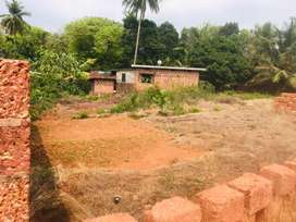 Land for sale argent