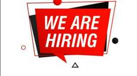 Wanted for picking packing scanig billing department