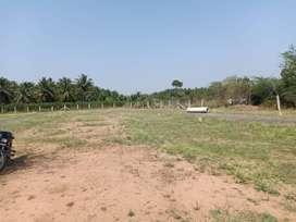 DTCP land offers going in sathy road GANESAPURAM - KOVILPALAYAM