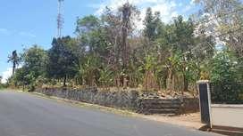 Tanah di Jalan Raya Politeknik (Buha)