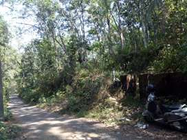 Land for sale in Padimon,Mallappally