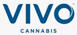 vivo company hiring