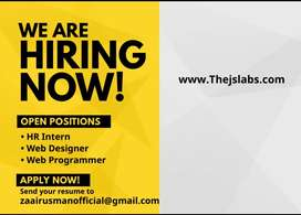 Urgently required a web developer