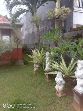 Disewakan rumah nuansa villa