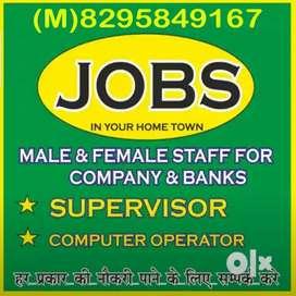 Supervisor Driver Guard Clerk diploma holder