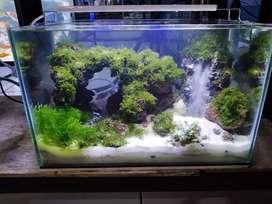Aquascape waterfall mini