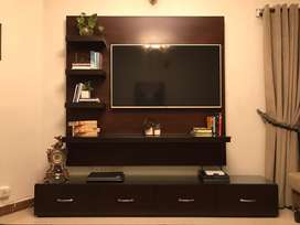 Televison console and Storage