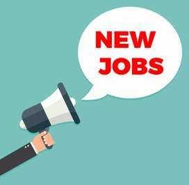 Male and female 2019 job vacancy