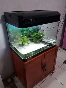 Aquarium akuarium pabrikan 60cm plus meja tuk arwana louhan aquascape
