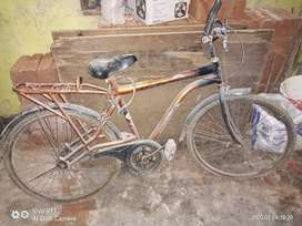 Cycle for sell.