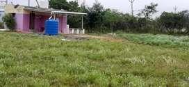 Farm land, farm house