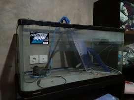 Aquarium nisso asli E213
