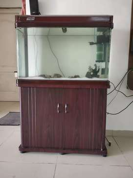 Very well maintained fish tank for sale!!!