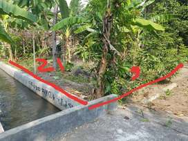 NEGO TANAH JOS 400m SMP Dharma Bhakti Bambanglipuro JK8358