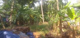 Kovoor near Bypass 8.75 cent house Plot for sale in Calicut