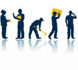 Labour or labour supervisor need