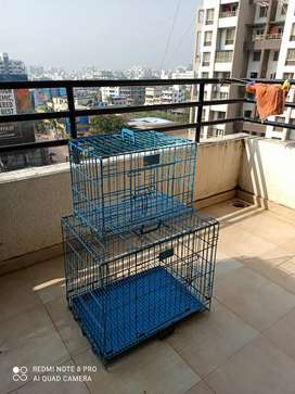 Cage of dogs or cats