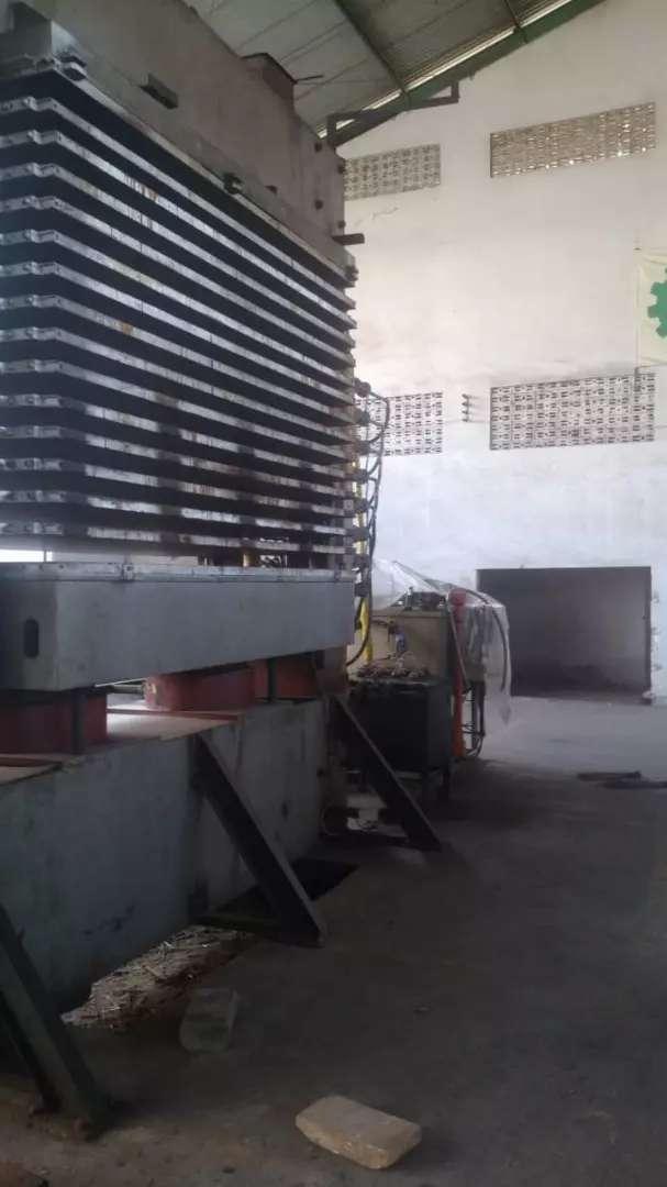 Hotpress plywood 0