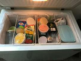 Blustar deep freezer, excellent condition, doctor owned