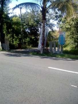 Tanah Pinggir Jln Raya Dungus timur Puskesmas Mojopurno