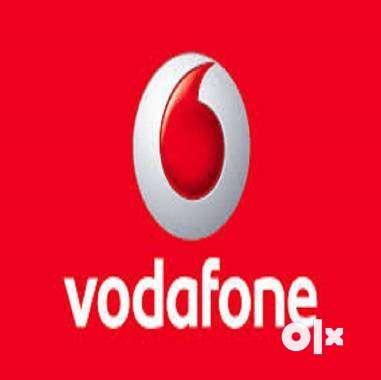 Vodafone Pvt Ltd Bulk Hiring For the Multiple Location for Fresher & E 0