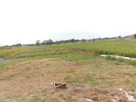 Tanah di jual di deli serdang