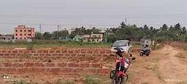 Near Aiims hospital