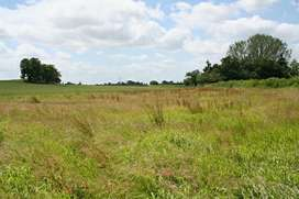 Land for Small Industry/ Petrol Pump /Shopping Complex/ Pollutary Farm