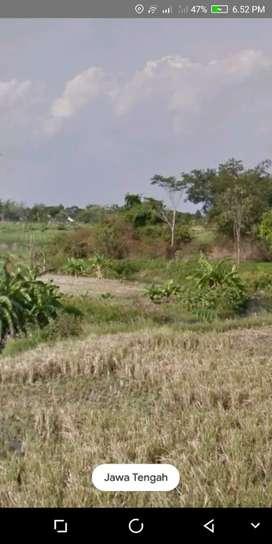 Tanah buat investasi strategis banyak tempat wisata