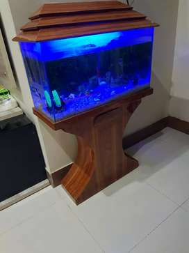 A very nice aquarium with heater, filter and many other decorations