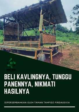Kavling Agrobisnis Dekat dengan Kawasan Wisata, Purwakarta
