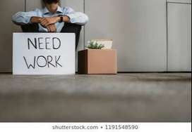 I need job I well do it my job