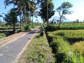 2 km dari kampus UII terpadu & Jogja Eco Park dijual di bawah 1 juta/m