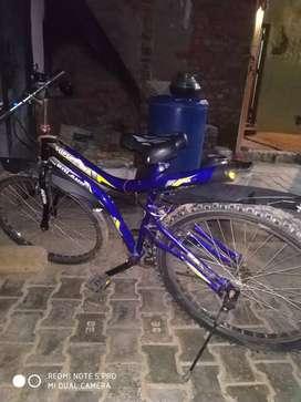 Bicycle roaland
