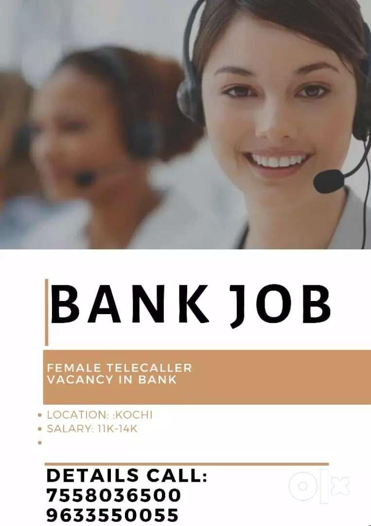 Telecaller vacancy in bank 0