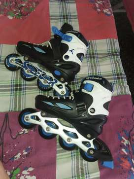 Skates (3 months )