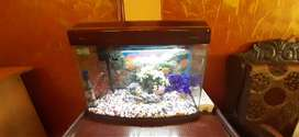 Aquarium R3-580 (Two Feet) with all accessories