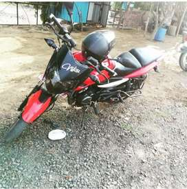 Exchange pulsar 135 new condition complete all documents