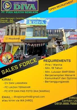 Open Recruitment, DIVA Electronics & Furnitures, SALES FORCE