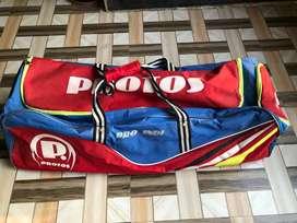 SG super club cricket pad with kit-bag
