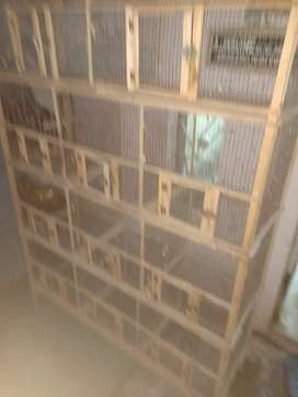 Love birds Cage 6.5 Feet with 11 individual cages